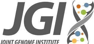 Amanda Hurley speaks at the 14th Annual JGI Genomics of Energy & Environment Meeting